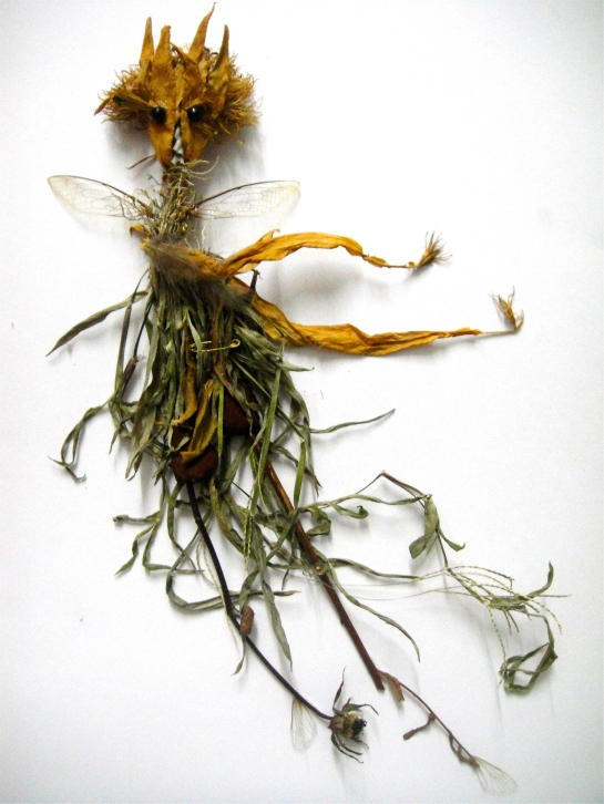 Meme, Stray Sod, 2015, twigs, insect nest, insect wings, grass, dry flowers, beads, leaves, 20 x 30 cm MID