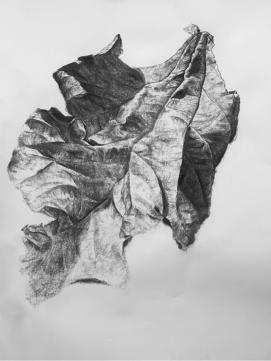 Leaf No. 2